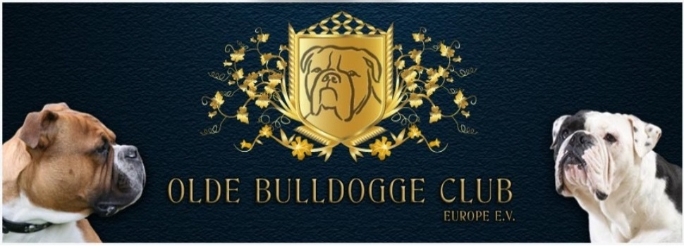 Olde Bulldogge Club Europe e.V.